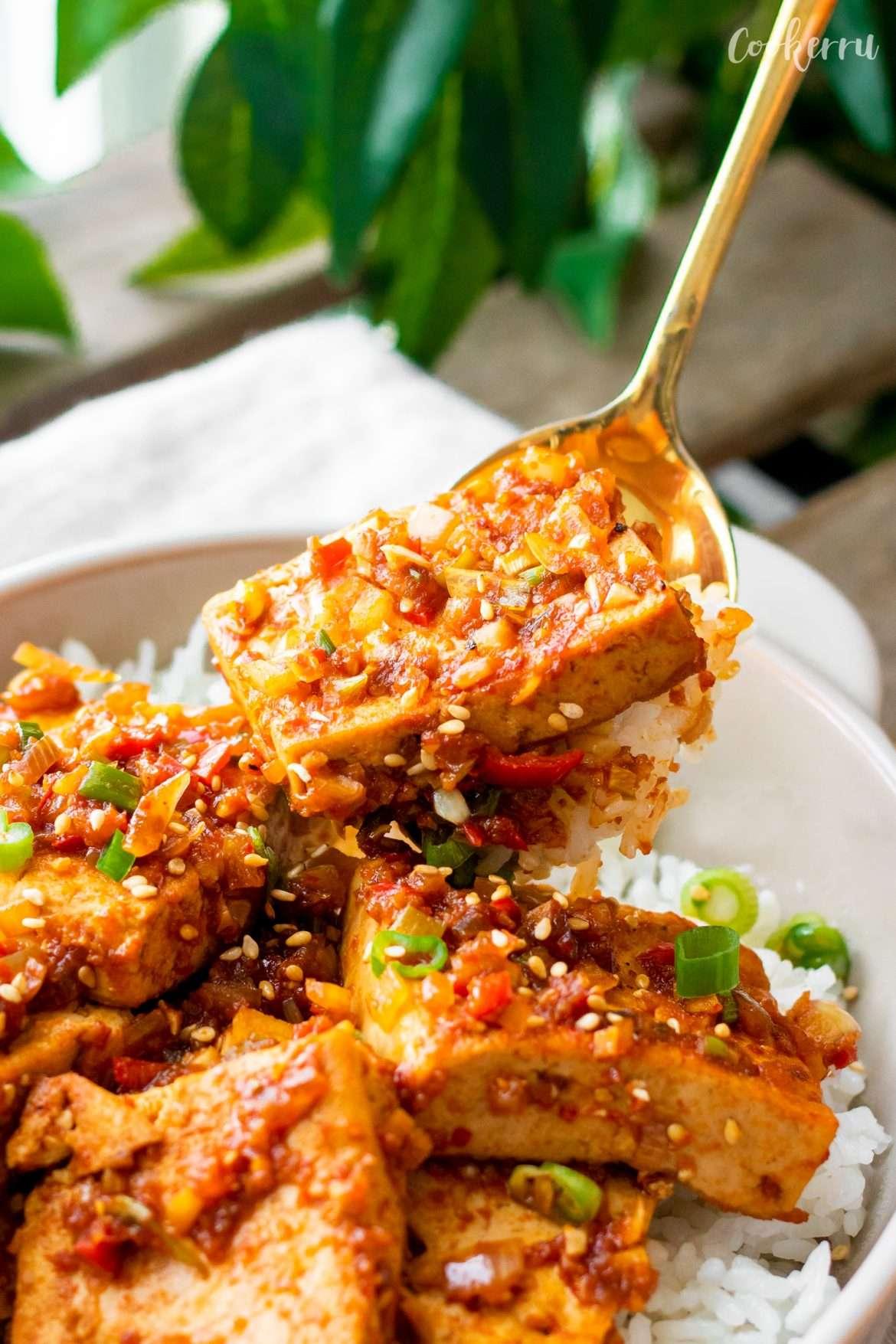 Dubu Jorim (Korean Braised Tofu)